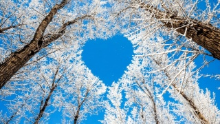 Пусть последний месяц зимы будет душевным и очень теплым!
